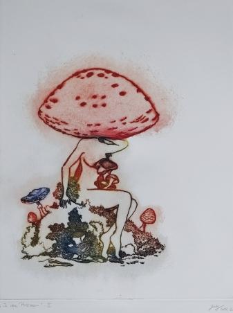 In den Pilzen - II
