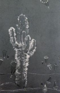 Kaktus-V_Ausschnitt