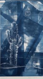Kaktus-II