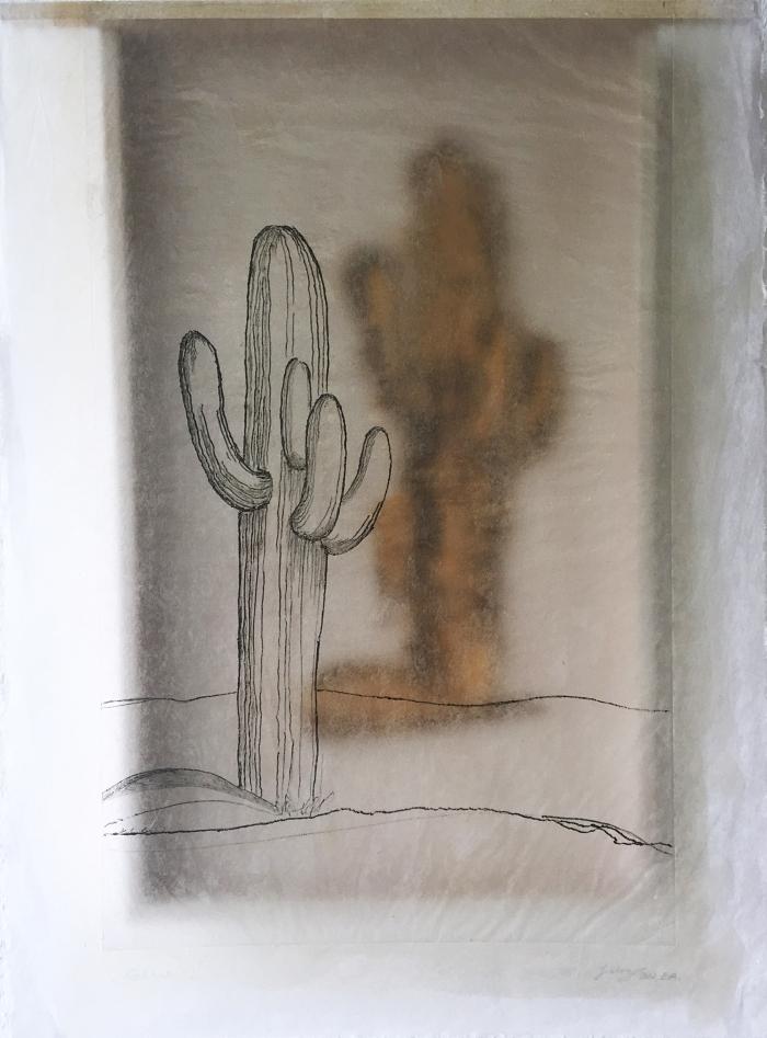 Kaktus - I
